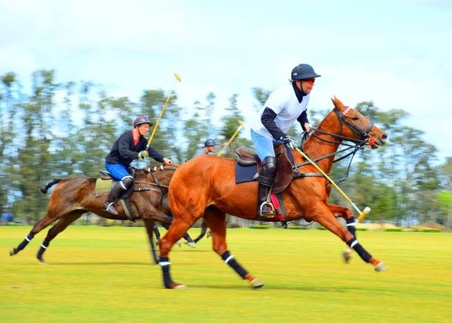 13 से 16 अप्रैल 2021 तक मैरठ कैंट में घुड़सवार स्पोर्ट्स कैडेट्स (Equestrian Sports Cadets) की भर्ती
