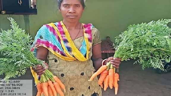 Kitchen garden: दिशोम गुरु पोषण वाटिका योजना से ग्रामीण महिलाओं-बच्चों की थालियों तक पहुंच रहा पौष्टिक भोजन